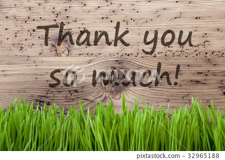 WWW_THANKMEDIA_COM_图库照片: bright wooden background, grass, thank you so much