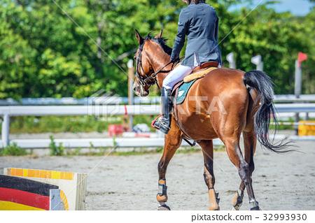 图库照片: 骑马风景