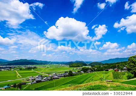 图库照片: 乡村风光 农村场景 夏天