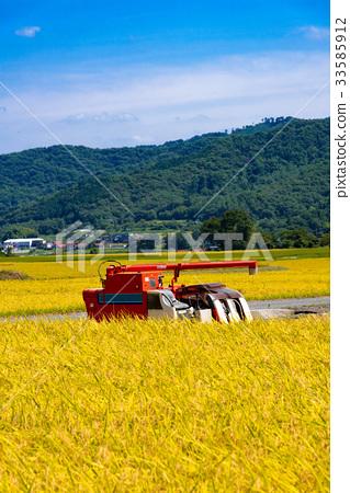 风景_自然 田地_稻田 稻田 照片 稻田 丰收 收获 首页 照片 风景_自然