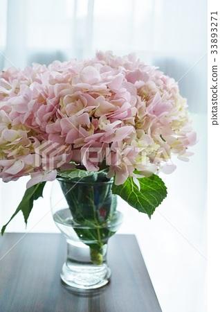图库照片: 粉红色的绣球花 花朵 花卉