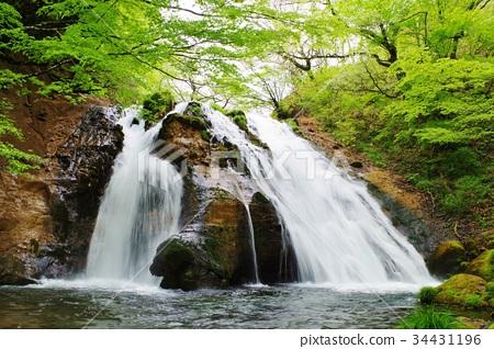 图库照片: 瀑布 风景 酷
