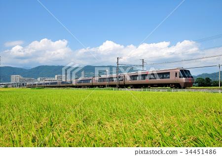 风景_自然 田地_稻田 稻田 照片 稻田 小田急 豪华列车 首页 照片