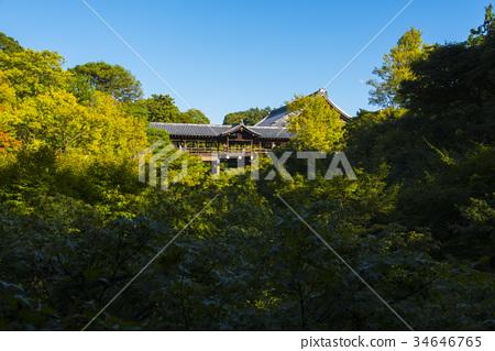 神社和庙宇 秋天 首页 照片 风景_自然 季节 秋 日本东福寺通天桥