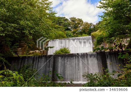 图库照片: 风景 奥大山 森林