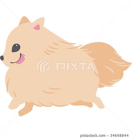 动物 小动物 首页 插图 姿势_表情_动作 行为_动作 跑步 矢量 动物 小