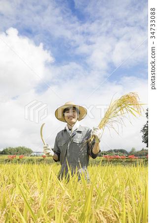 稻田 照片 男性 男 男人 首页 照片 风景_自然 田地_稻田 稻田 男性