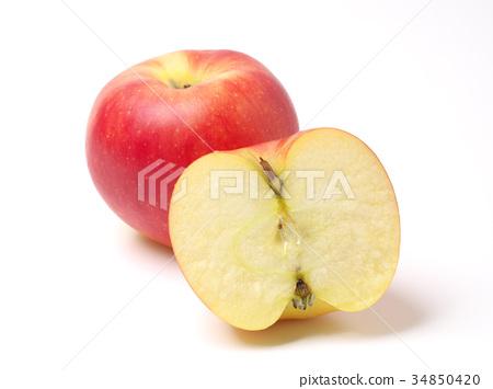 首页 照片 蔬菜_食品 水果 苹果 苹果 水果 横截面  *pixta限定素材仅