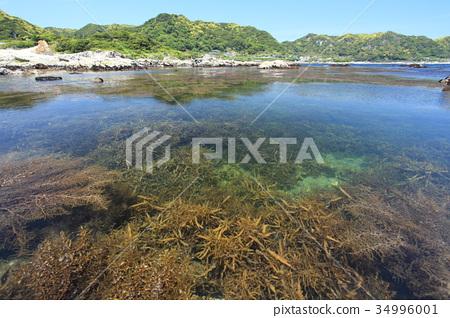 图库照片: 海岸 岩岸 风景