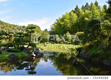 图库照片: 风景 日本园林 日式花园