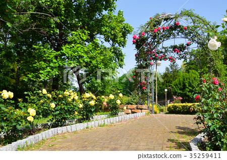 图库照片: 鹤见绿地 花博纪念公园 公园