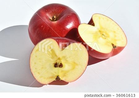 首页 照片 蔬菜_食品 水果 苹果 水果 苹果 横截面  *pixta限定素材仅