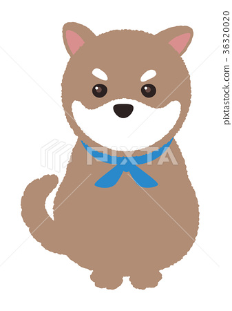 狗 狗狗 柴犬 首页 插图 姿势_表情_动作 表情 可爱 狗 狗狗 柴犬