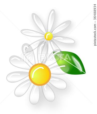 插图素材: 玻璃花