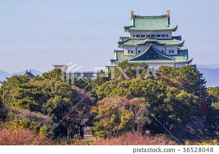 照片 风景_自然 季节 秋 名古屋城堡 城堡 城堡塔楼  *pixta限定素材