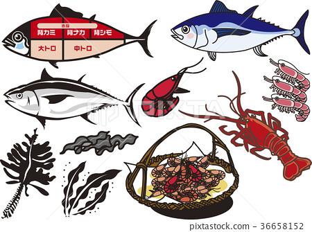 图库插图: 矢量 生鱼片 刺身