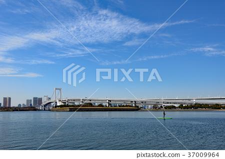 图库照片: 彩虹桥 风景 海洋