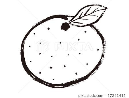 图库插图: 橘子 蜜柑 水果