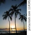 oahu, honolulu, waikiki beach 114345