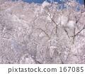 雪坡 纯白 雾凇 167085