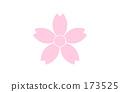 粉色 櫻花 櫻 173525