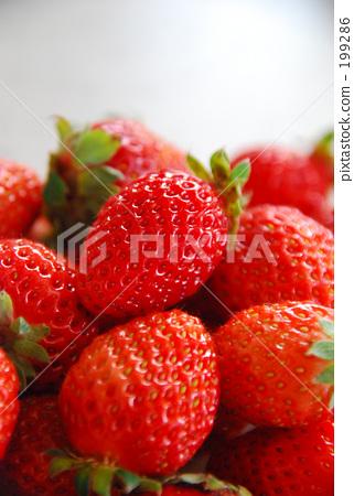 Strawberry 199286
