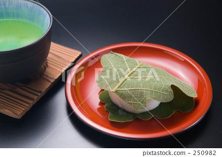 kashiwa mochi, wagashi, japanese confectionery 250982