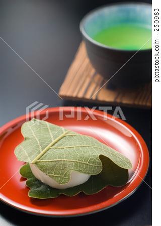 kashiwa mochi, wagashi, japanese confectionery 250983