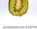 과일, 후르츠, 키위 258719