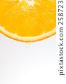 귤, 과일, 후르츠 258723