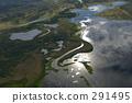 沼澤地 鳥瞰圖 空中拍攝 291495