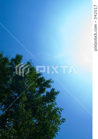 อากาศ,ทัศนียภาพ,ภูมิทัศน์ 342017
