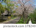 mori (town), hokkaido, landscape 378240