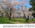 木壘(鎮) 北海道 風景 378243