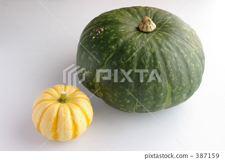 Pumpkin large and small 387159