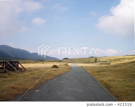 Country road of Aso 423319