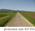 Continuing road 437255