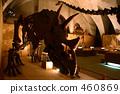 fossil, fossilized, dinosaur 460869