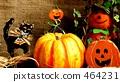 Halloween 464231