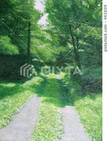 Forest Road 465609