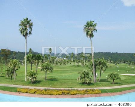 golf 468390