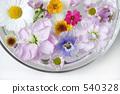 floating flowers 540328
