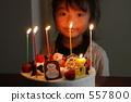 生日和聖誕蛋糕 557800