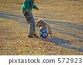 play, pet, pets 572923