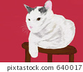 貓圖 640017
