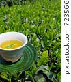 綠茶 茶葉 第一級茶 723566