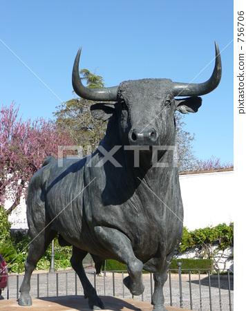 Bullfighting 756706