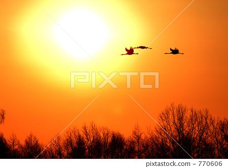 kushiro, sunset, sunsets 770606