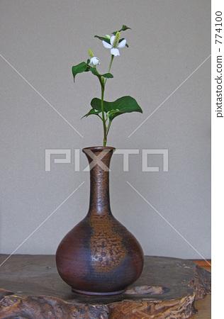 Bud Vase Flower Vase Vase For One Flower Stock Photo 774100