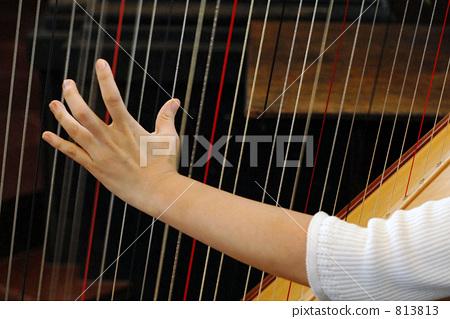 harp, stringed instrument, stringed instruments 813813